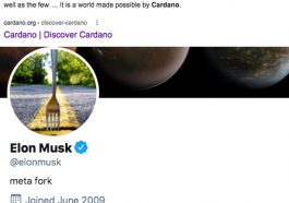 """Elon Musk Hinting at Cardano (ADA) by Changing His Twitter Avatar to a """"Fork in The Road"""" ?"""